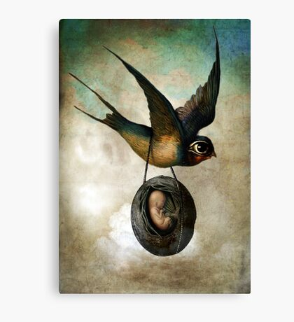 Precious flight Canvas Print