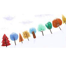 Christmas tree snowy scene Photographic Print