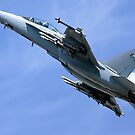 Boeing F/A-18F Super Hornet by Andrew Harker