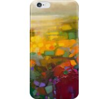 Clarity Study 1 iPhone Case/Skin