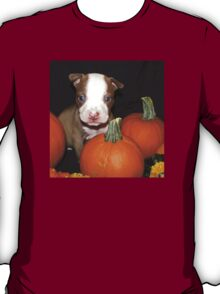 HAPPY HALLOWEEN !! T-Shirt