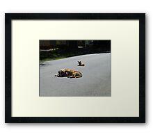 Future Road Kill Framed Print
