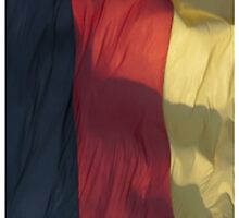 Waving Flag of Germany From 2014 Winter Olympics by pjwuebker