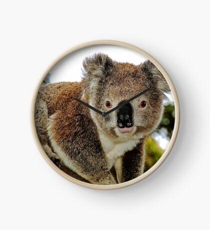 Koala Watch Clock