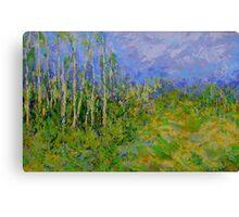 birch trees landscape Canvas Print