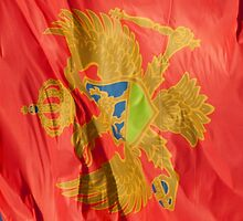 Waving Flag of Montenegro From 2014 Winter Olympics by pjwuebker