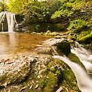 Janet's Foss by Stephen Knowles