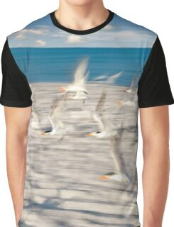 Gulls in flight Graphic T-Shirt