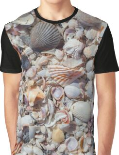 Seashells Graphic T-Shirt