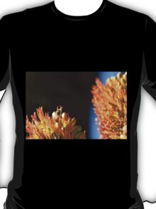 Bee with dark background T-Shirt