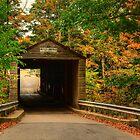 Bulls Bridge by Kathy Baccari