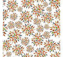 Abstract colorful flowers on white background. Photographic Print