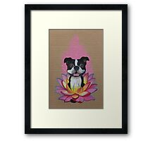 Zen Boston Terrier - Lotus Flower Framed Print