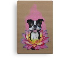 Zen Boston Terrier - Lotus Flower Canvas Print