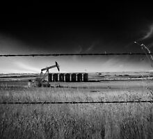 North Dakota Study in B & W VI by Nate Welk