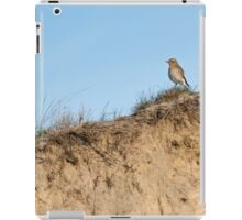 Northern wheatear on top of a dune iPad Case/Skin