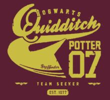 Potter Quidditch 07 by teeshirtninja