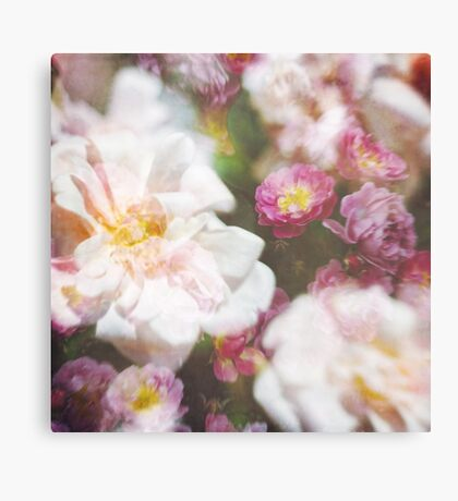 Painterly Roses Canvas Print