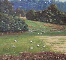 Sheep in a field in the Devon countryside by martyee