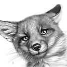 Fox cub G139  by schukinart