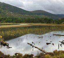Loch Gamnha by Jamie  Green