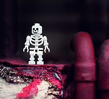 ::: { THE SKELETON } ::: by Lucia Fischer