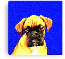 Boxer dog in blue Canvas Print