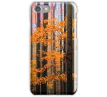 MAPLES IN FOG iPhone Case/Skin