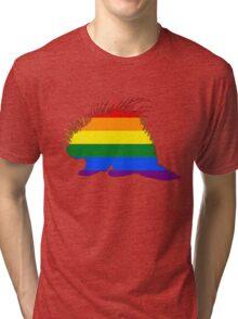 Rainbow Porcupine Tri-blend T-Shirt
