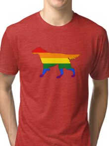 Rainbow Setter Tri-blend T-Shirt