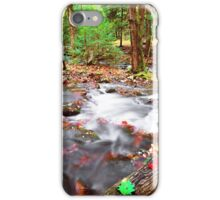 AUTUMN STREAM,ELKMONT iPhone Case/Skin