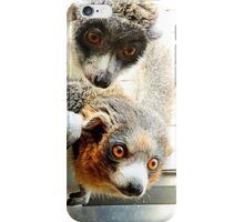 Mongoose Lemur iPhone Case/Skin