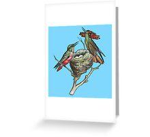 Hummingbirds on Nest  Greeting Card