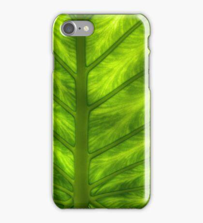 Fern macro iPhone Case/Skin
