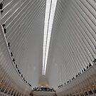 World Trade Center Transit Hub Oculus, Lower Manhattan, New York City by lenspiro