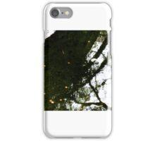 bridge and pond in japanese tea garden,golden gate park iPhone Case/Skin