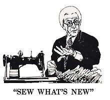 SEW WHAT'S NEW by Shawn  Quinlan