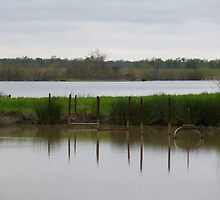 Old Dock to the Relift Pump by WildestArt