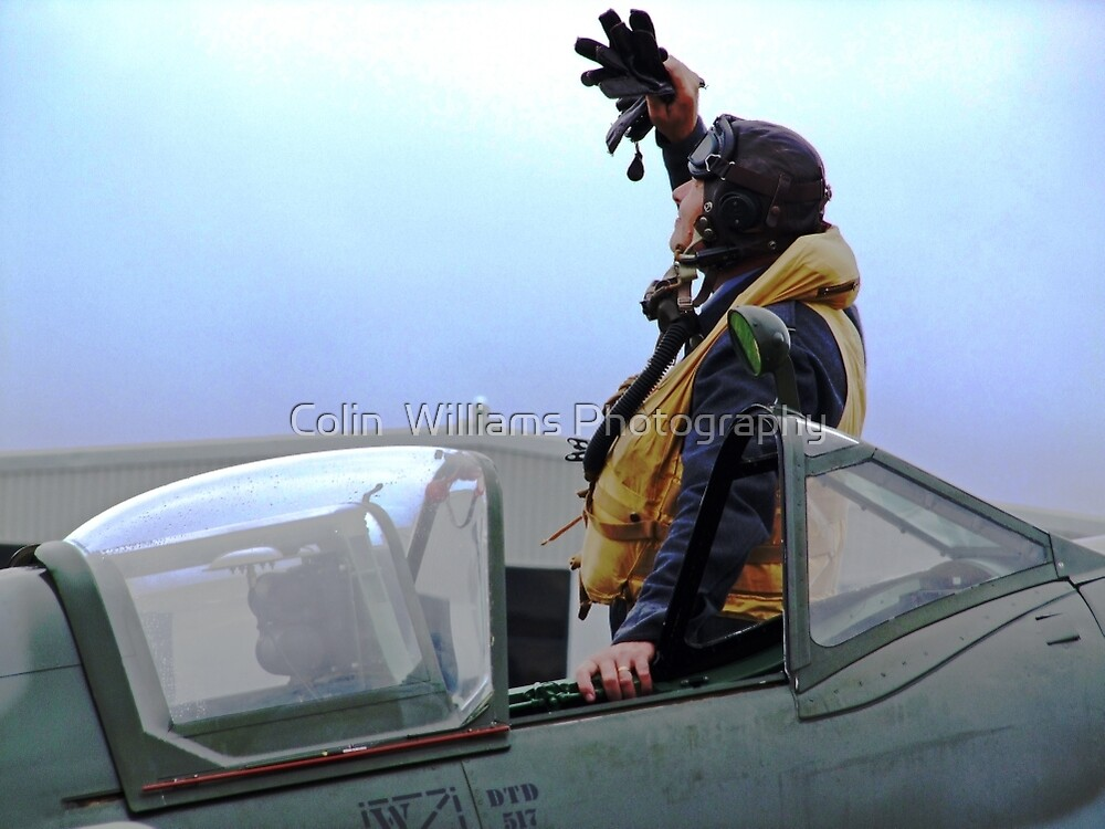 Reach For The Sky - Shoreham Airshow 2010 by Colin  Williams Photography
