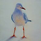 Sunset Seagull. Elizabeth Moore Golding 2011 by Elizabeth Moore Golding