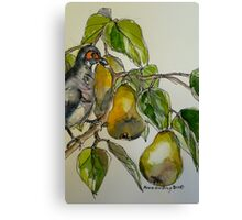 Partridge in a pear tree. Elizabeth Moore Golding 2011 Canvas Print