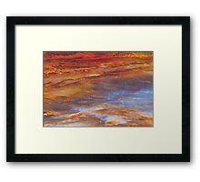 Petrified Wood Abstract Framed Print