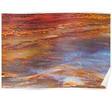 Petrified Wood Abstract Poster