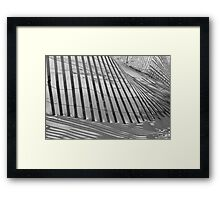 Sand Fence Framed Print