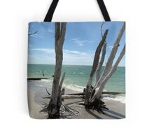 Stumps at Stump Pass Florida, USA Tote Bag