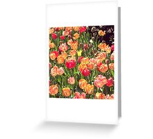 Flowers, NYC Greeting Card