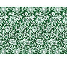 William Morris Carnations | Green and White Floral Pattern Photographic Print