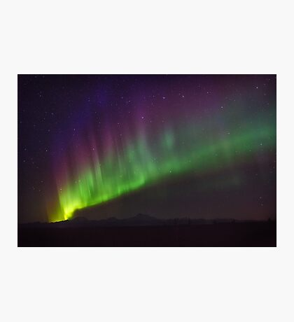Flash of the Night Sky Photographic Print