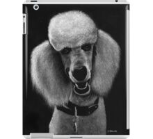 Howard iPad Case/Skin