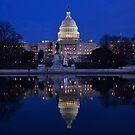 U.S. Capital - Washington D.C.  Plate No.# 2015 by Matsumoto